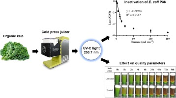 Continuous-flow UV-C processing of kale juice for the inactivation of E. coli and assessment of quality parameters