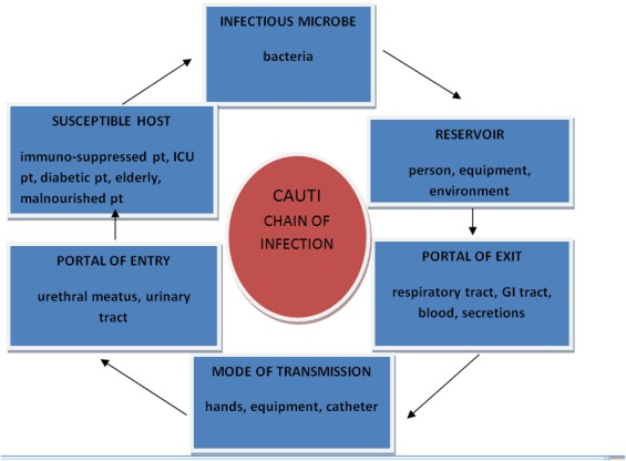 An Intervention To Improve The Catheter Associated Urinary Tract