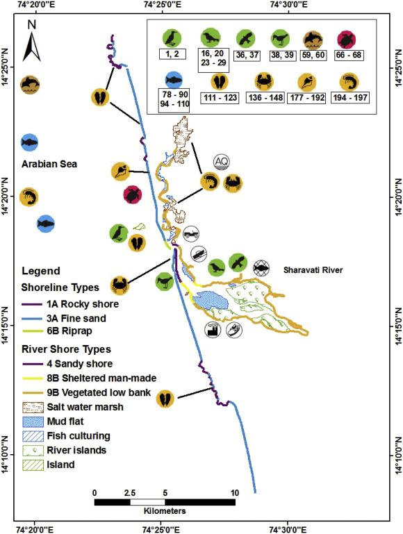 Environmental sensitivity mapping of the coast of Karnataka