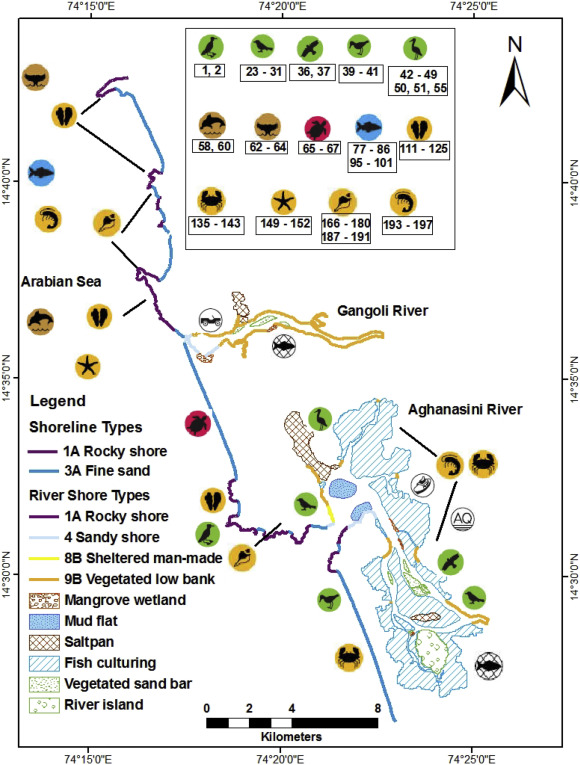 Environmental sensitivity mapping of the coast of Karnataka, west