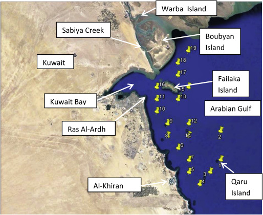Coastal erosion and accretion in Kuwait – Problems and management
