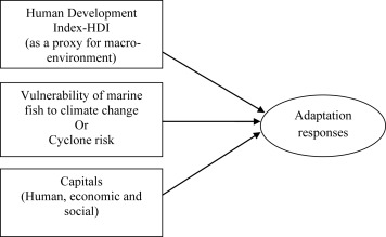 Factors linked with adaptation in the Indian marine fishing