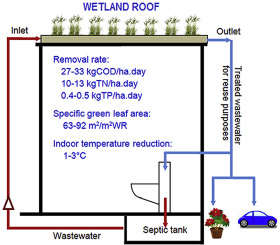 Improvement of septic tank effluent and green coverage by