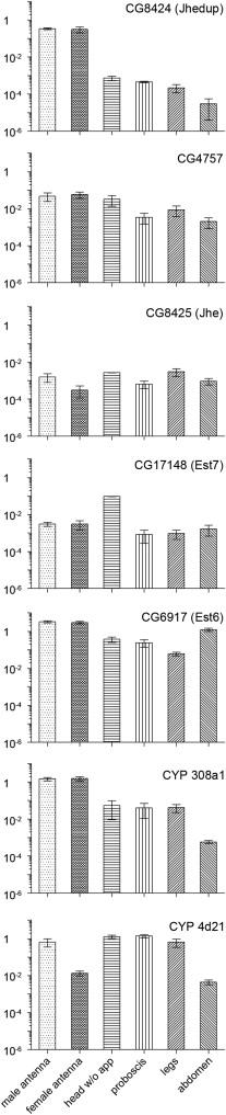 Identification of candidate odorant degrading gene/enzyme