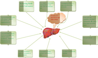 Activity of liver enzymes in multiple sclerosis patients with Hot