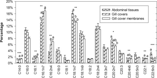 Sources Of Organic Carbon For Rimicaris Hybisae Tracing Individual