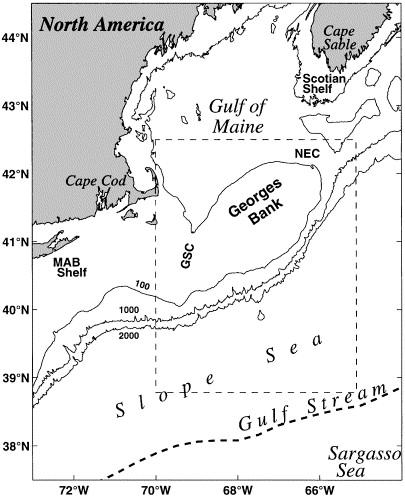 Gulf Strem