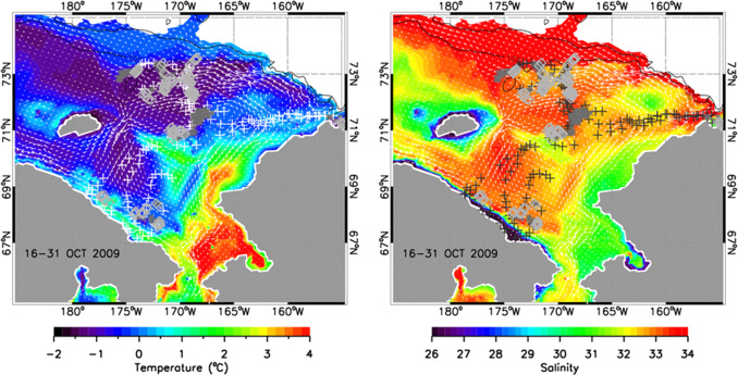 Oceanographic characteristics associated with autumn