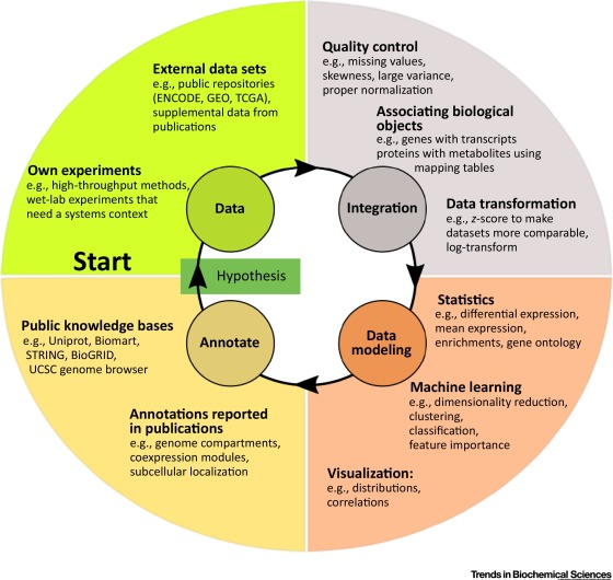 A Primer on Data Analytics in Functional Genomics: How to Move from