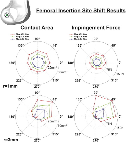 The Effects Of Graft Size And Insertion Site Location During