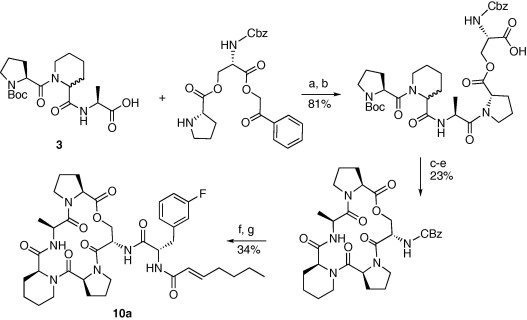 Diversity-oriented synthesis of cyclic acyldepsipeptides