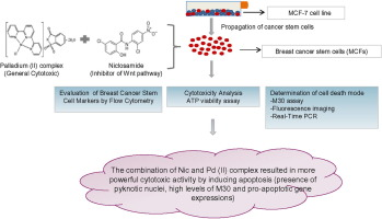 Addition Of Niclosamide To Palladium Ii Saccharinate Complex Of Terpyridine Results In Enhanced Cytotoxic Activity Inducing Apoptosis On Cancer Stem Cells Of Breast Cancer Sciencedirect