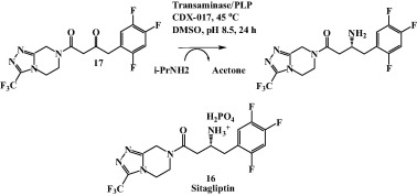 Biocatalysis for synthesis of pharmaceuticals - ScienceDirect