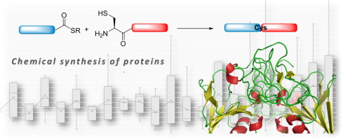 a statistical view of protein chemical synthesis using ncl and