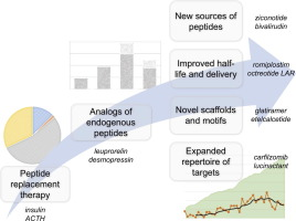 Therapeutic peptides: Historical perspectives, current