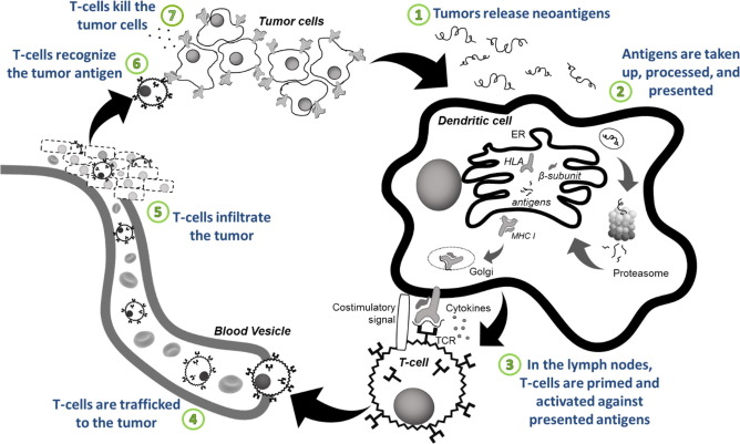 Personalized neoantigen vaccines: A new approach to cancer