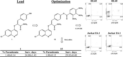 Optimization of antimalarial, and anticancer activities of