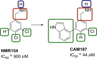 Novel non-ATP competitive small molecules targeting the CK2
