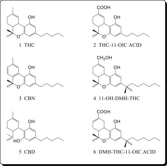 Eicosanoid mediation of cannabinoid actions - ScienceDirect