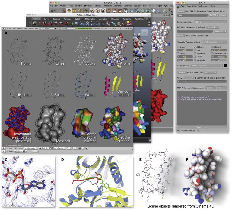 ePMV Embeds Molecular Modeling into Professional Animation