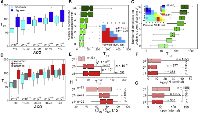 Topology and Oligomerization of Mono- and Oligomeric