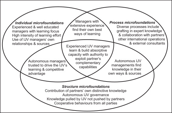 Microfoundations for learning within international joint ventures ...