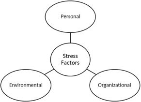 stress among ab initio pilots a model