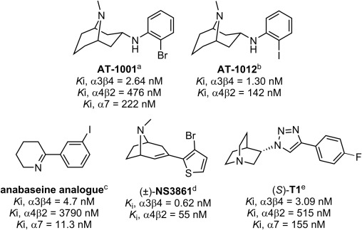 Radiosynthesis of (S)-[18F]T1: The first PET radioligand for