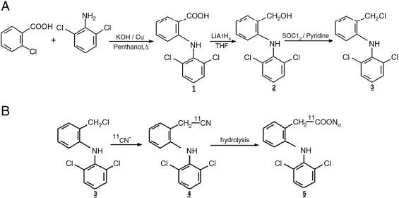 furosemide oral iv conversion
