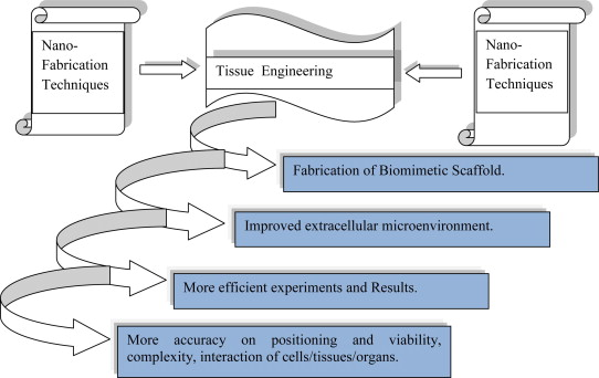 future of tissue engineering