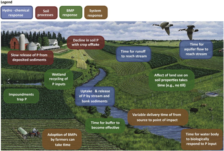 Managing agricultural phosphorus for water quality: Lessons