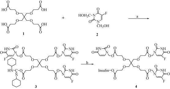 Synthesis and characterization of insulin-5-Fu conjugate, enabling