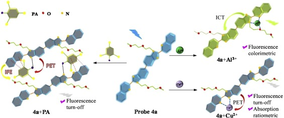 A Multifunctional Probe Based On The Conjugate Of Four Fused N Heterocycles Detecting Picric Acid Cu2 And Al3 In Ethanol Solution System Sciencedirect
