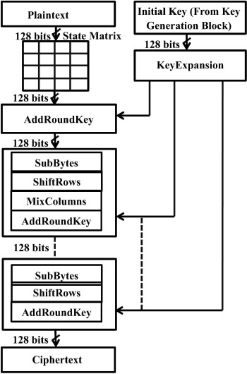 An efficient AES implementation using FPGA with enhanced security
