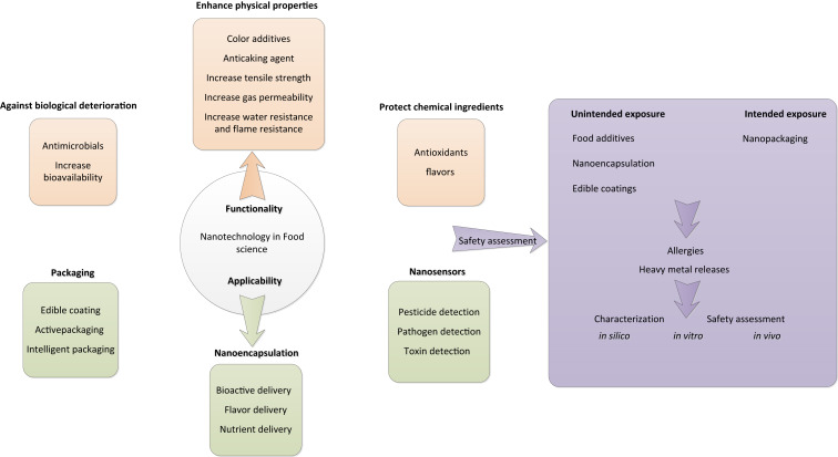 Nanotechnology in food science: Functionality, applicability