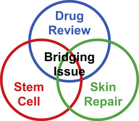 Stem cell therapy on skin: Mechanisms, recent advances and