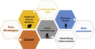 Concurrent Administration Of Anticancer Chemotherapy Drug And Herbal Medicine On The Perspective Of Pharmacokinetics Sciencedirect