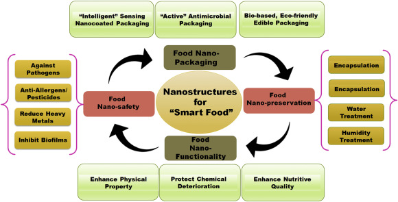 Prospects of using nanotechnology for food preservation