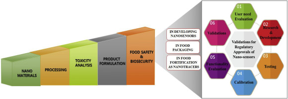 Prospects of using nanotechnology for food preservation, safety, and