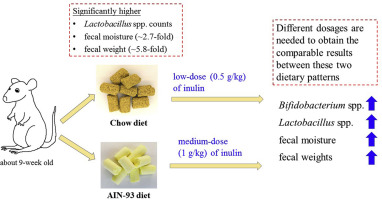 high protein diet fecal output