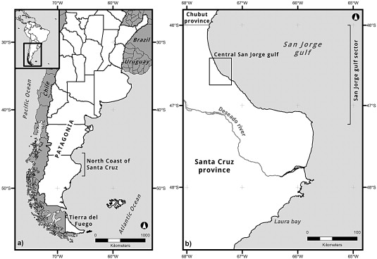 Distributional Archaeology In Central San Jorge Gulf Sector Santa