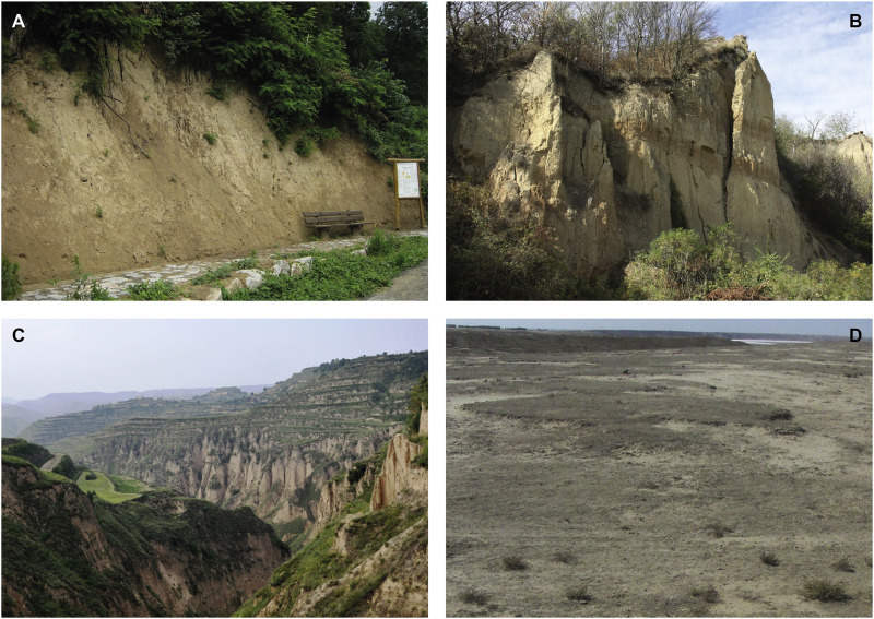 Loess: Rock, sediment or soil – What is missing for its definition ...