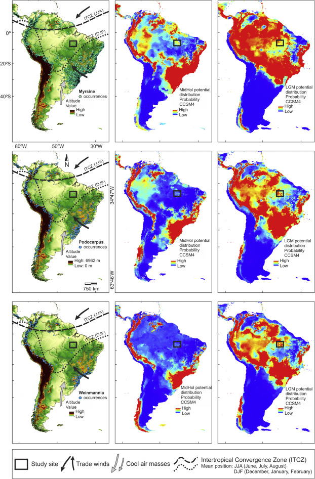 Environmental And Vegetation Changes In Southeastern