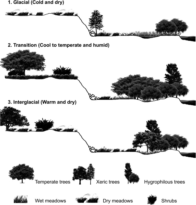 The Middle To Late Pleistocene Herpetofaunal Assemblages