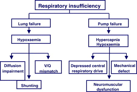 Acute Respiratory Failure In The Cancer Patient The Role Of Non