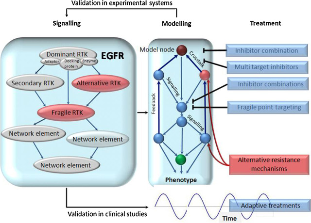 Integrating genomics in head and neck cancer treatment: Promises and