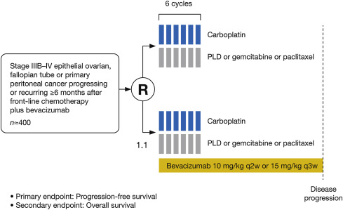 Bevacizumab In Ovarian Cancer Focus On Clinical Data And Future Perspectives Sciencedirect