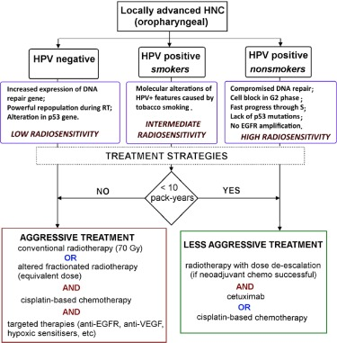 Future treatment directions for HPV-associated head and neck cancer