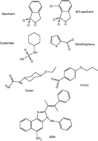 synthesis of dulcin