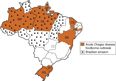 Transmission of Chagas Disease (American Trypanosomiasis) by Food